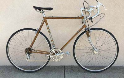 Raleigh Professional MKII Restorations